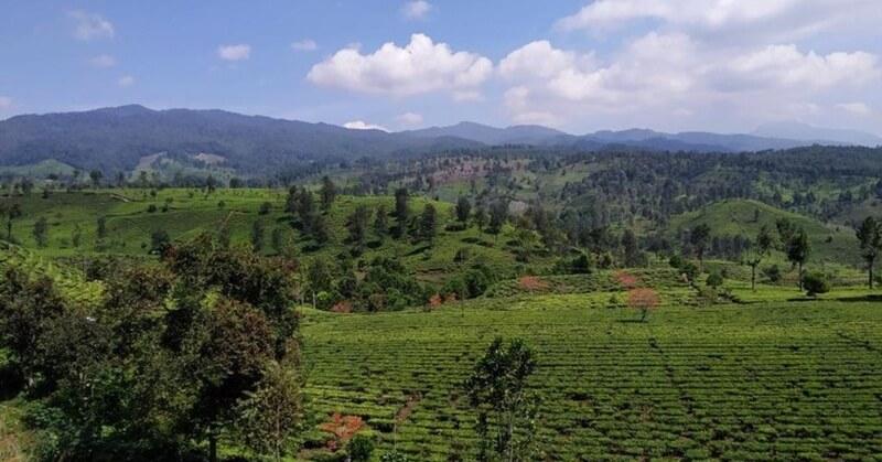 Alam Bandung Selatan