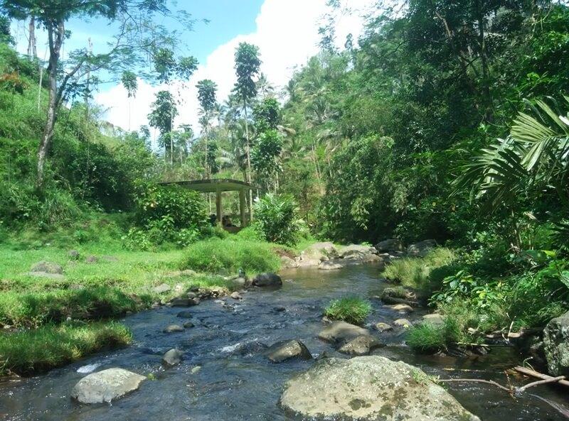 Aliran Sungai Dekat Curug Ceheng