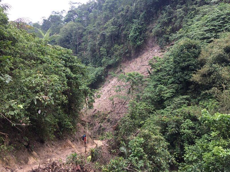 Jalur Trekking Menuju Curug Cihear