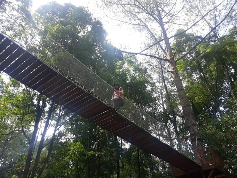 Spot Jembatan Kayu