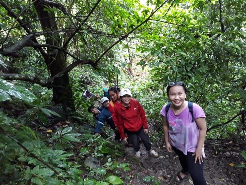View Alam Di Jalur Trekking
