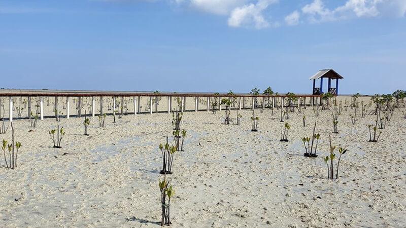 Desa Wisata Terong Geopark Belitung