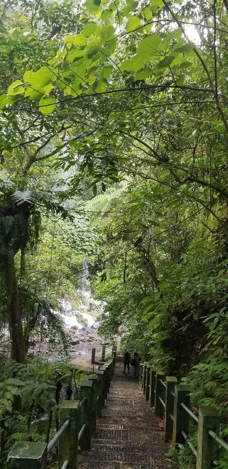 trekking menuju air terjun