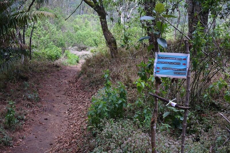 trekking menuju air terjun girimanik