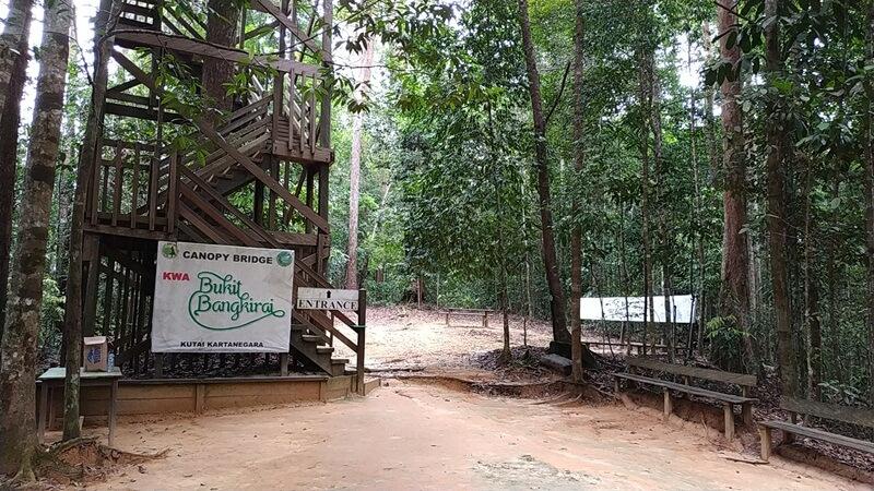 tangga menuju canopy bridge