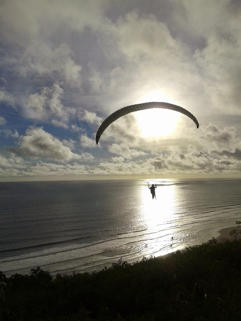 terbang di atas laut lepas