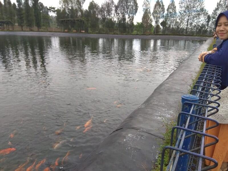 danaunya dihuni ikan ikan yang cukup besar