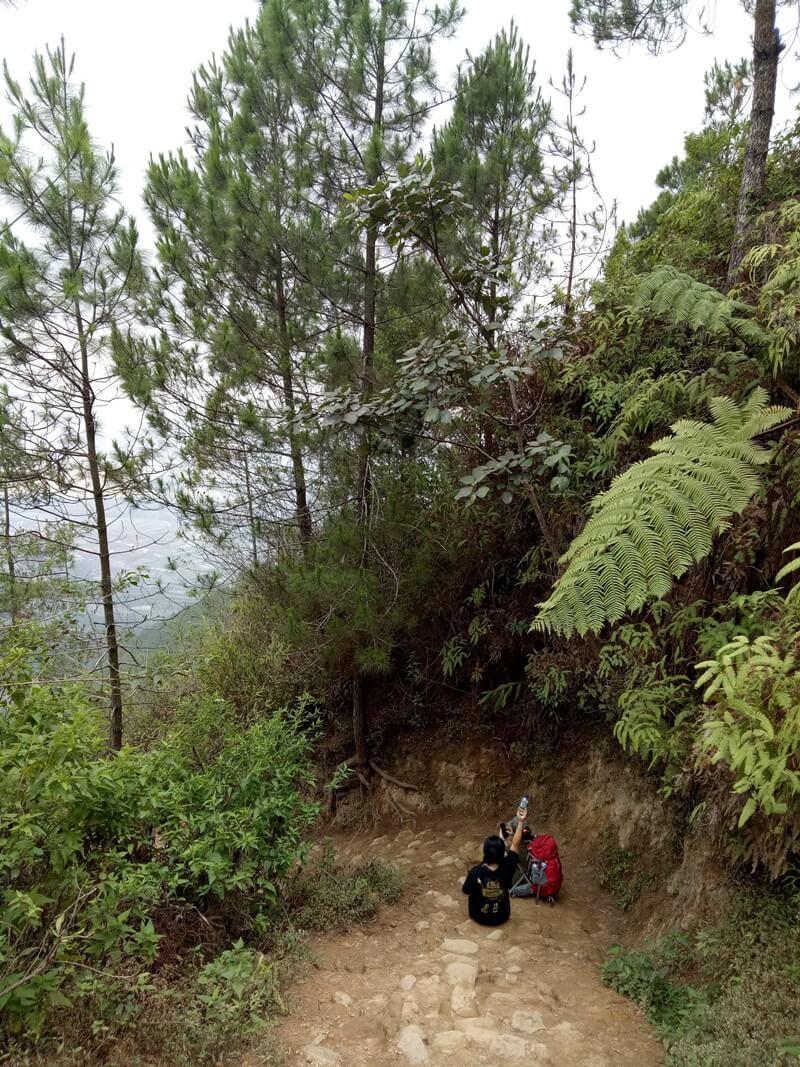 jalur trekking