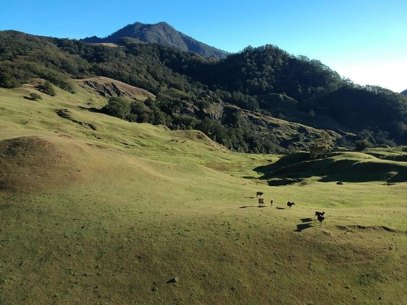 gunung mutis wisata timor tengah selatan