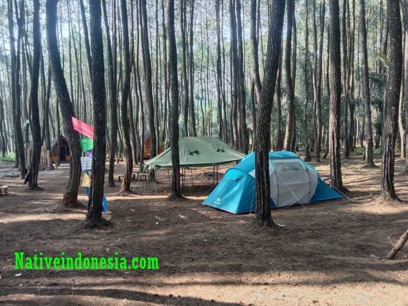 camping under the sky coffee camp cilawu garut