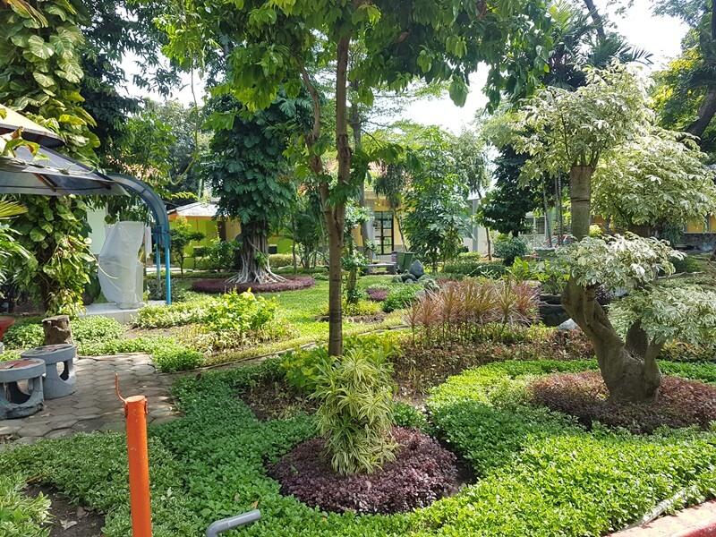 taman yang cantik