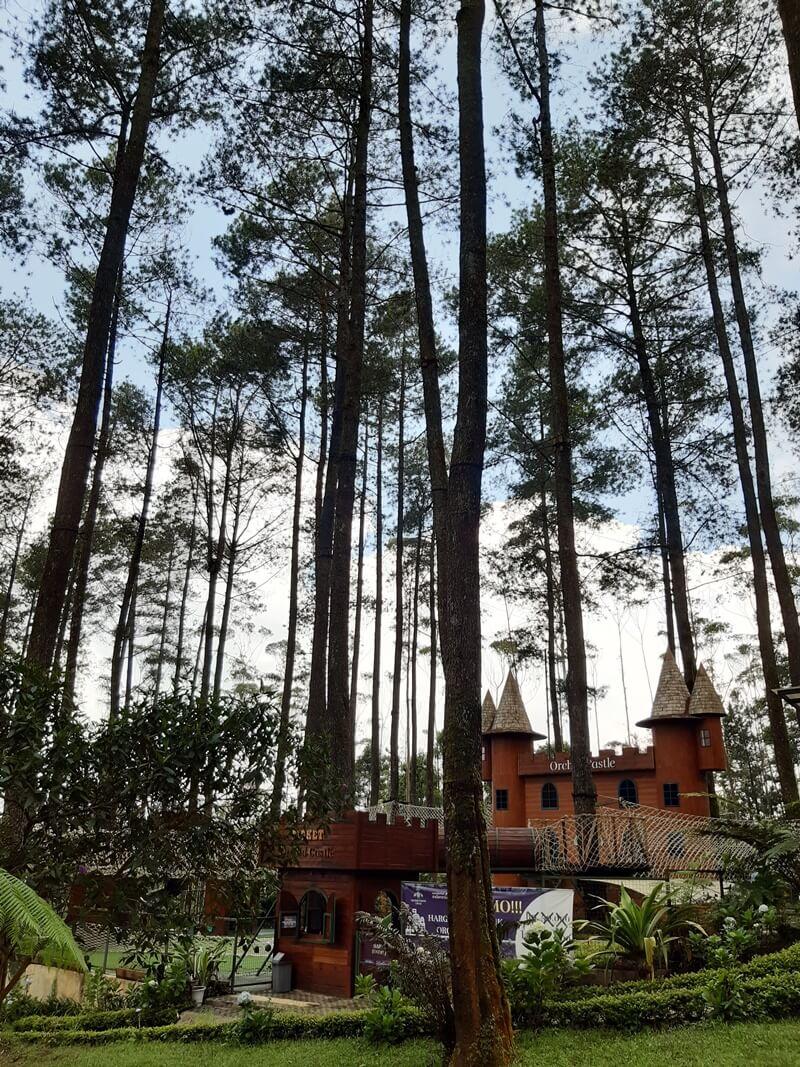 wisata keluarga orchid forest lembang