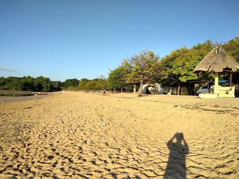 hamparan pasir putih dihiasi hijaunya pepohonan