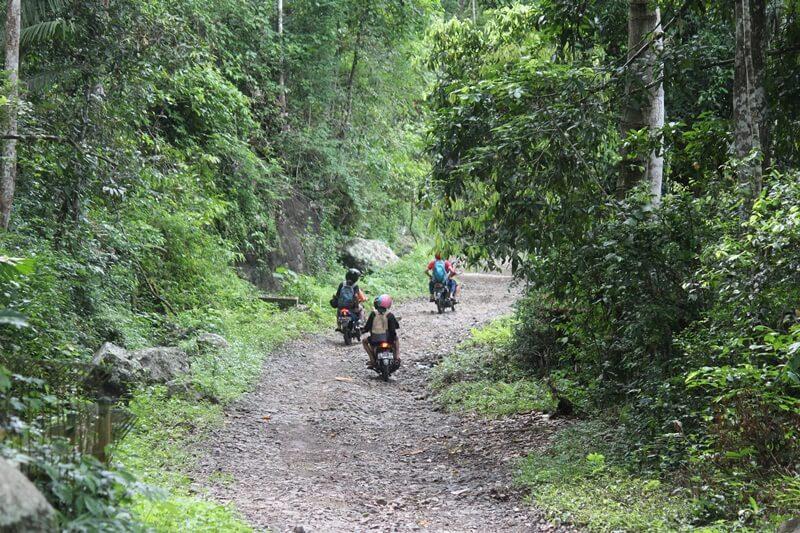 Pantai Bandealit, Pantai Unik dan Damai di Tengah Hutan Lindung