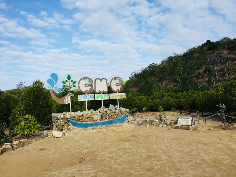 terletak di kawasan konservasi mangrove clungup