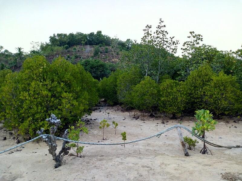 pemandangan trekking menuju pantai clungup