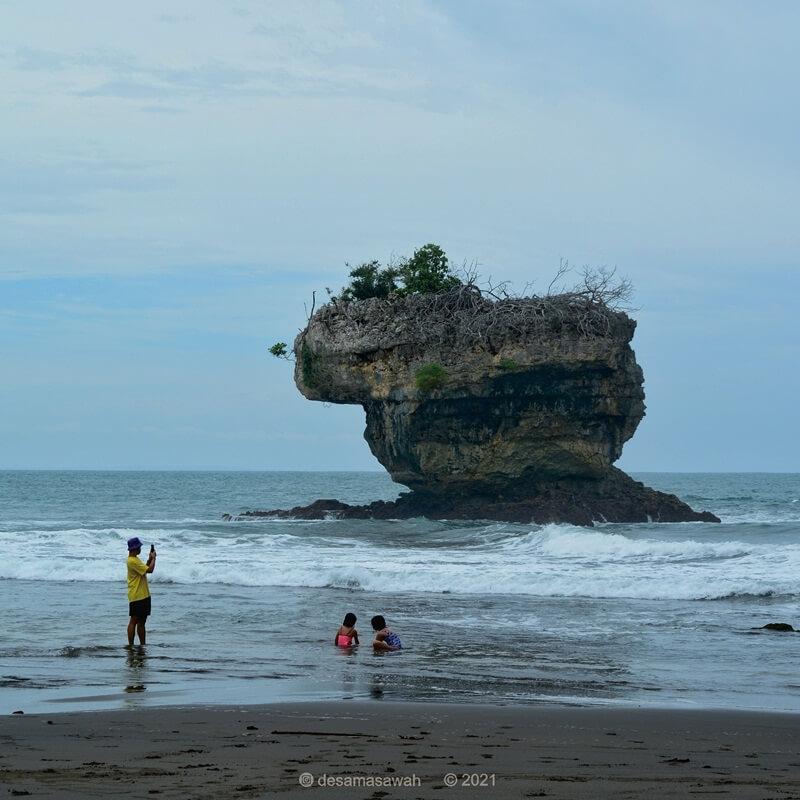 hiasan batu karang