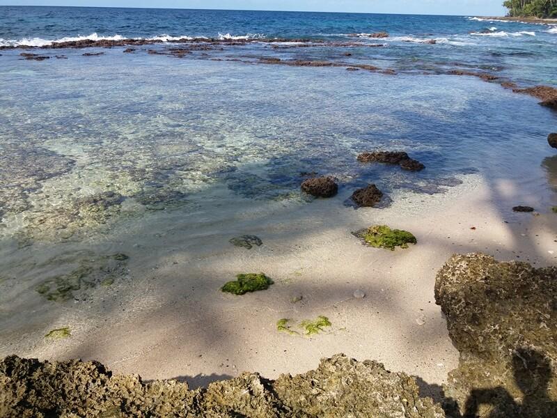 batu karang penghias pantai