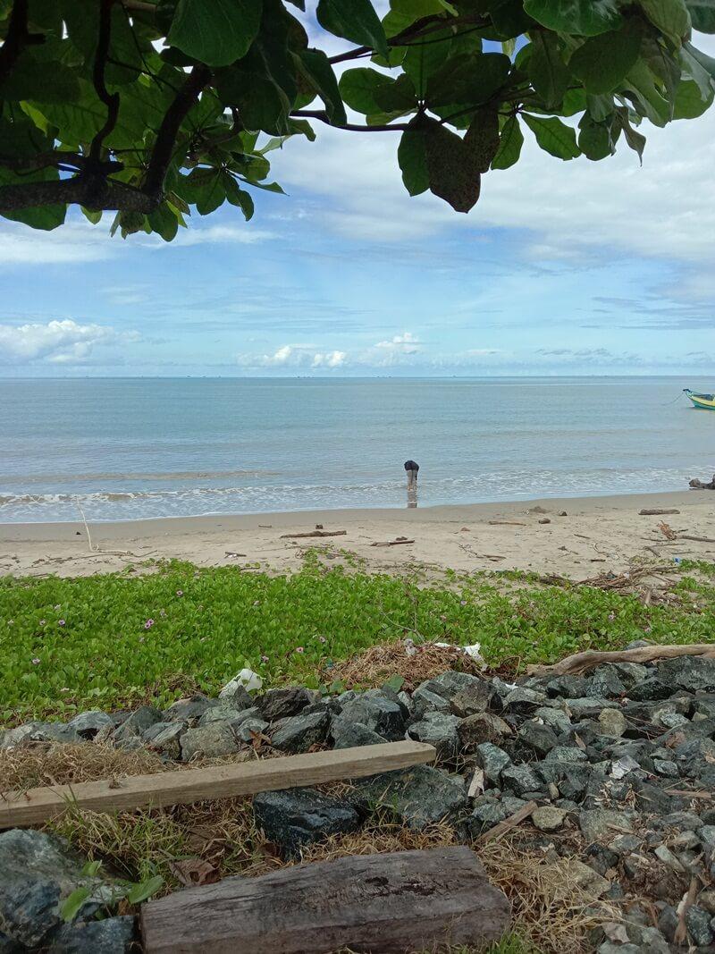 kondisi pantai yang tenang