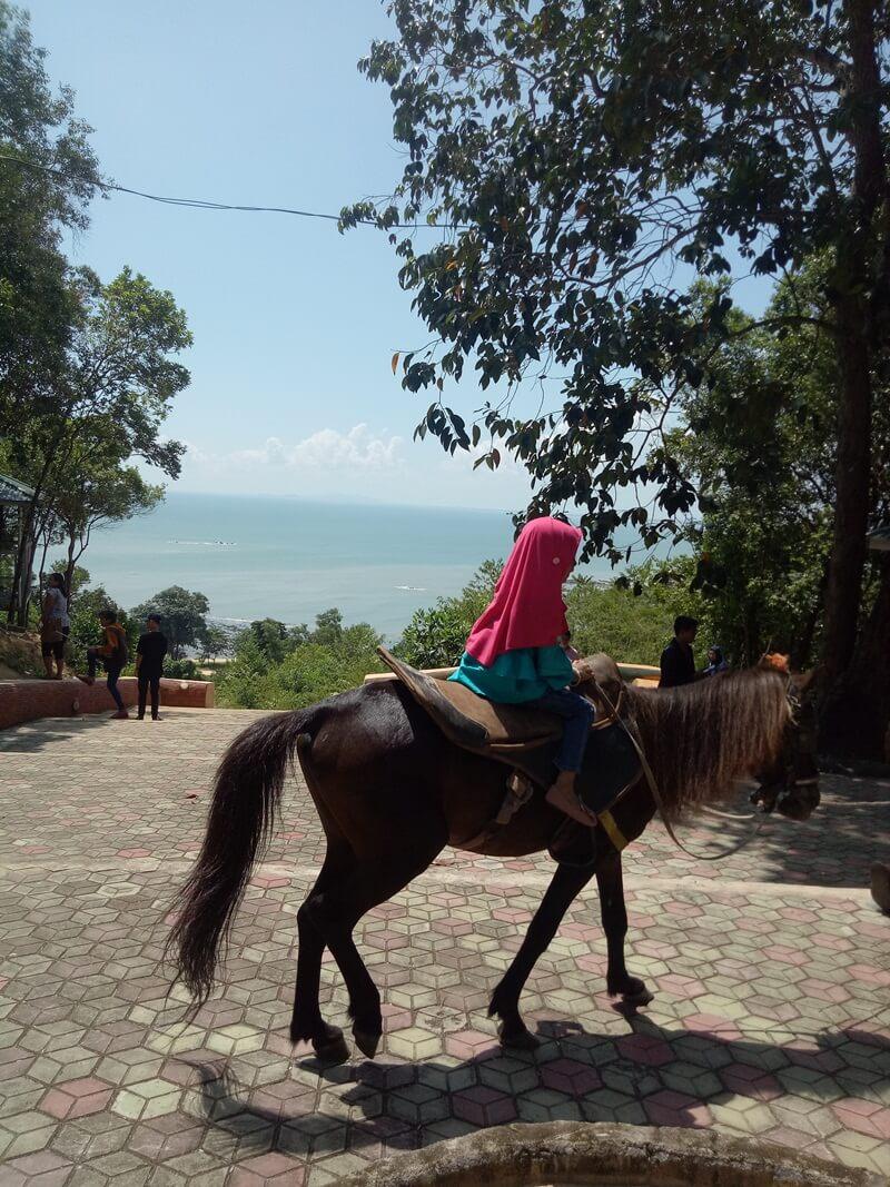 berkuda mengelilingi taman sinka island park