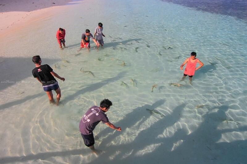 bermain bersama baby shark
