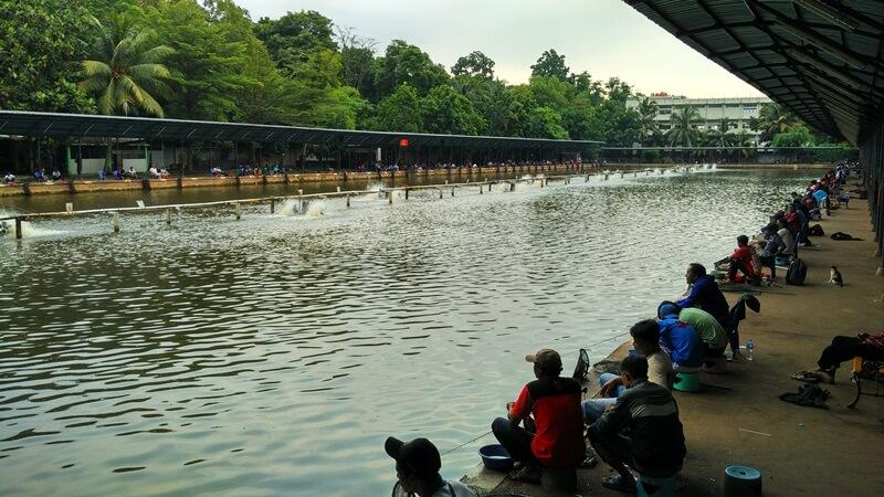 kolam galatama