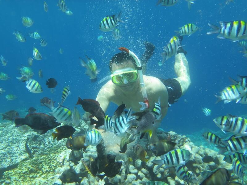 snorkeling di taman laut olele